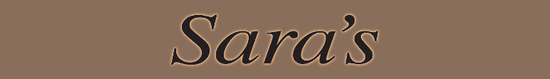 Salong Service AS
